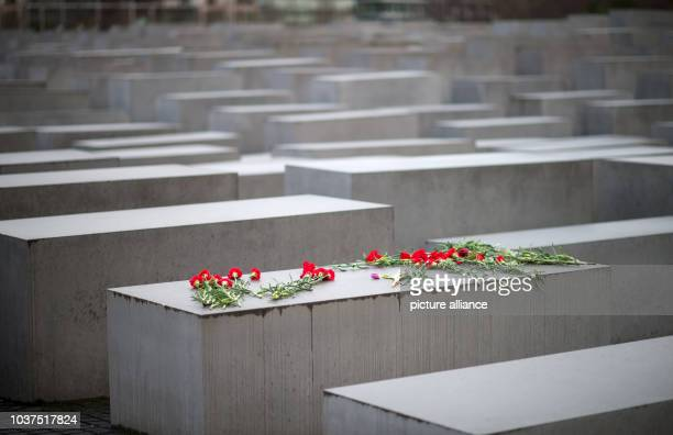 Flowers lay on a stele at the Memorial to the Murdered Jews of Europe in Berlin Germany 27 January 2015 On this day 70 years ago the Soviet Army...