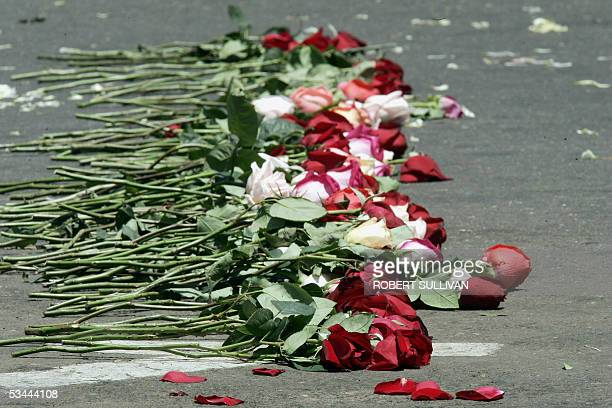 Flowers left by relatives of the victims of the plane crash after a memorial service at the morgue 20 August 2005 in Maracaibo Venezuela Although...