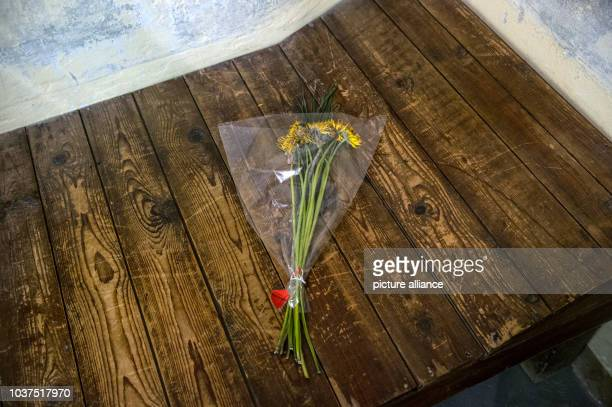 Flowers lie on a plank bed in a cell of the Berlin-Hohenschoenhausen Memorial to the victims of the East German Ministry for State Security in...