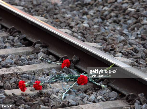 Flowers lie on the railway tracks at El Pozo station to mark the first anniversary of the Madrid train bombings on March 11 2005 in Madrid Spain 191...