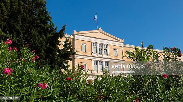 flowers near the old royal palace, athens, greece - greek parliament stock pictures, royalty-free photos & images
