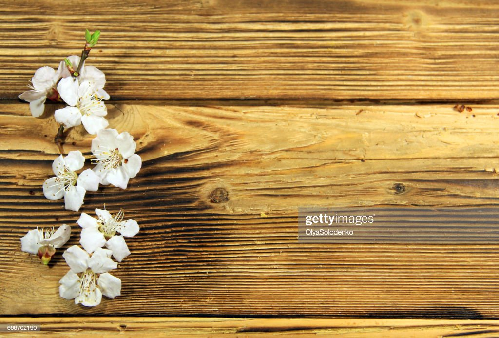http://www.istockphoto.com/photo/flowers-of-apricot-tree-on-wooden-background-gm666702190-121548177