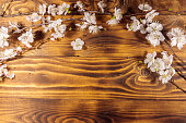 http://www.istockphoto.com/photo/flowers-of-apricot-tree-on-wooden-background-gm949013312-259074457
