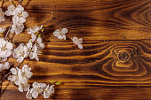 http://www.istockphoto.com/photo/flowers-of-apricot-tree-on-wooden-background-gm949013314-259074458