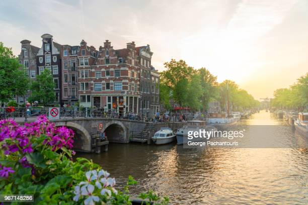 flowers on a bridge in amsterdam, holland - amsterdam stock pictures, royalty-free photos & images