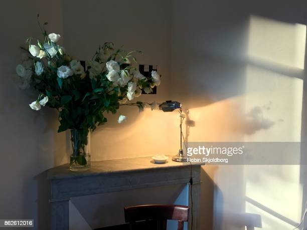 flowers on mantelpiece in sunlight - robin skjoldborg stock pictures, royalty-free photos & images