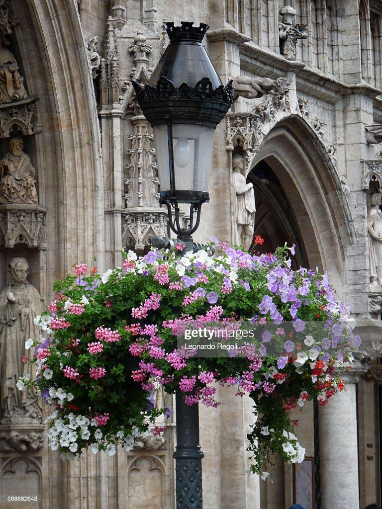 Flowers on post light : Stock Photo