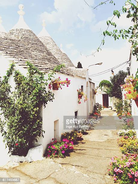 Flowers On Street By Trulli Houses Against Sky At Alberobello