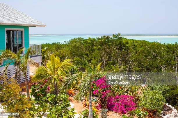 Flowers palm trees and beach view from a villa on June 15 2012 in Long Island The Bahamas
