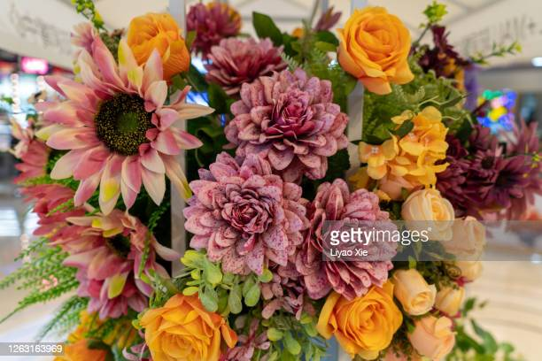 flowers - liyao xie stock pictures, royalty-free photos & images