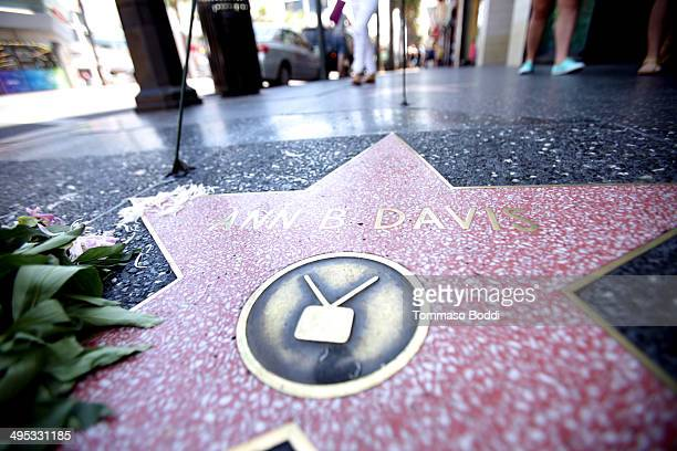 Flowers Place On The Hollywood Walk Of Fame Star In Remembrance Of