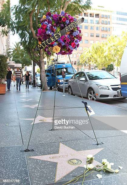 Flowers placed on the Hollywood Walk of Fame Star in Memory Of Hollywood legend Mickey Rooney on April 7 2014 in Hollywood California