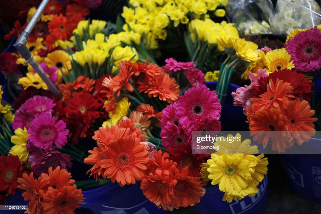 Import Flowers Inc. Warehouse Ahead Of Consumer Comfort Figures : News Photo
