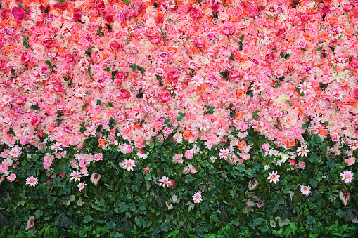 Flowers wall 1158492468