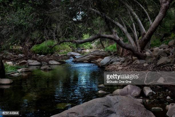 flowing creek - escondido california stock photos and pictures