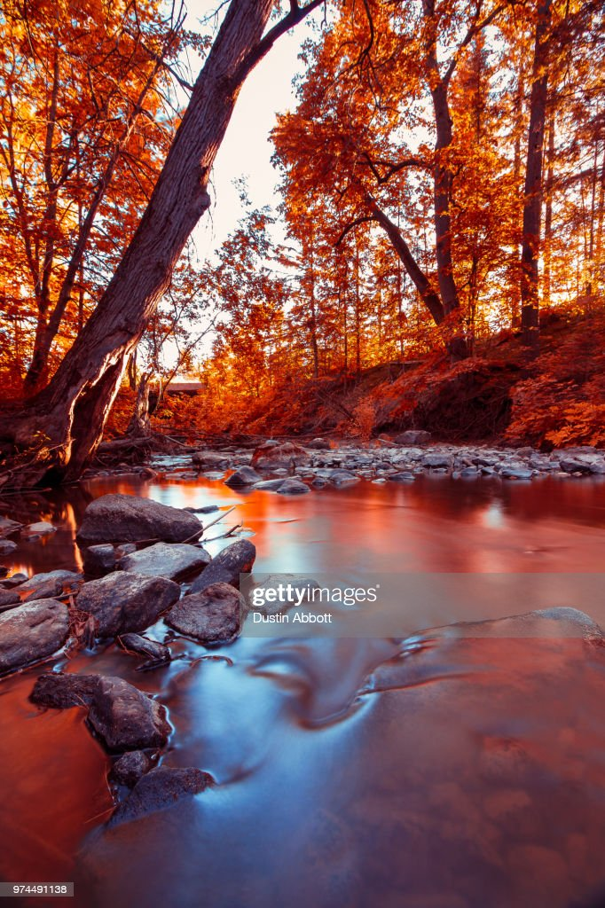 Flowing into Autumn : Stock Photo