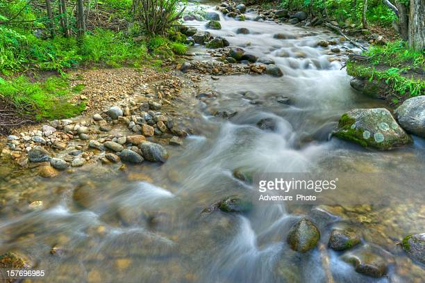 flowing mountain creek over rocks - beaver creek colorado stock pictures, royalty-free photos & images