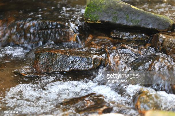 flowing spring water from a mountain spring - spring flowing water stock pictures, royalty-free photos & images