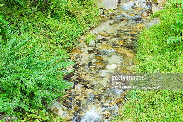 Flowing Stream, Agematsu-machi, Nagano Prefecture, Japan