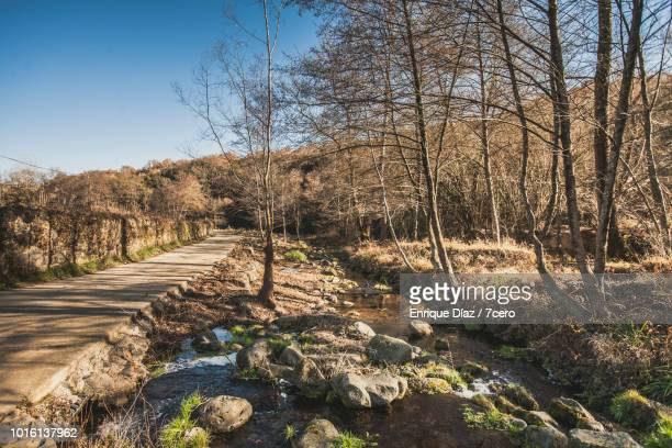 A flowing stream in Mieres, Catalonia