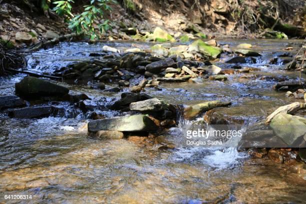 flowing water from a mountain creek - lençol freático imagens e fotografias de stock