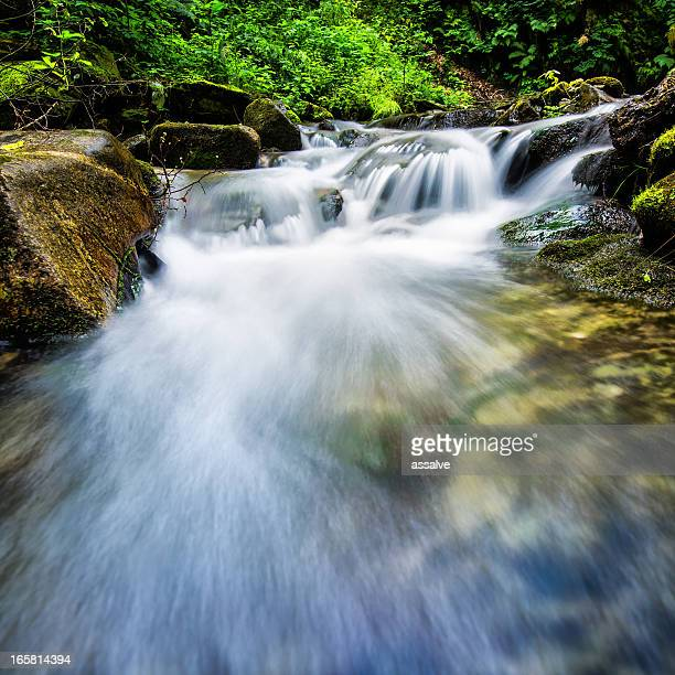 flowing water in small river