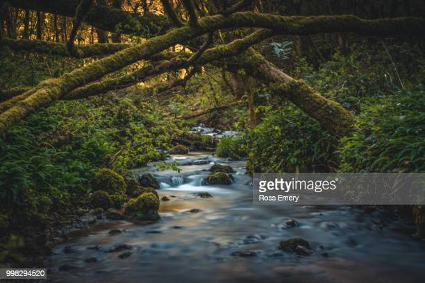 flowing water - emery stock photos and pictures