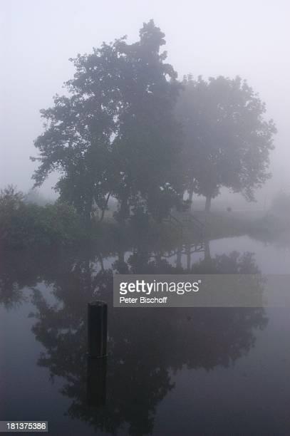 Fluß Hamme , Hamme-Niederung bei Worpswede, Teufelsmoor, Niedersachsen, Deutschland, Europa, Künstlerkolonie, Künstlerdorf, Gewässer, Nebel, diesig,...