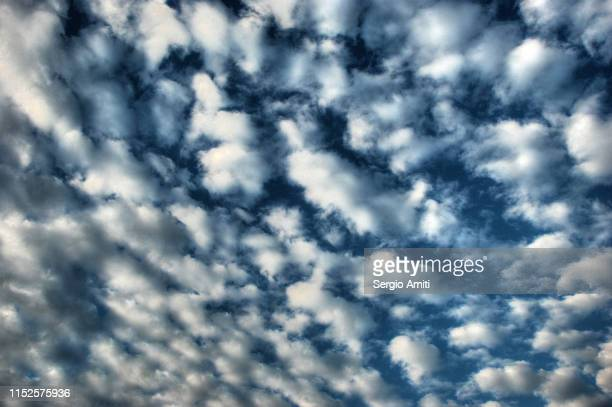 fluffy clouds - altocumulus stockfoto's en -beelden