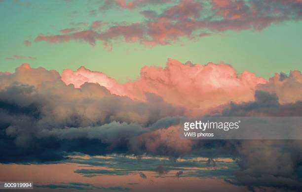 Fluffy Pink Clouds in Sunset Sky