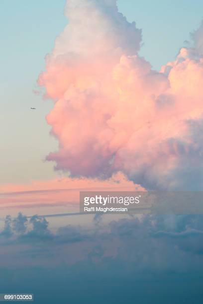 fluffy pink clouds with a light blue sky in the background - altocumulus stockfoto's en -beelden