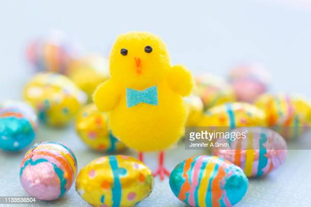fluffy yellow easter chick - easter chick stock pictures, royalty-free photos & images