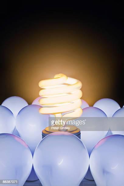 fluorescent and incandescent light bulbs - incandescent bulb fotografías e imágenes de stock