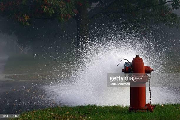 Flushing hydrants