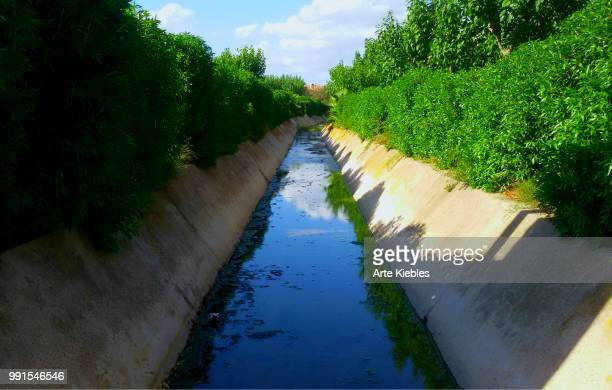 fluvial - arte stock photos and pictures