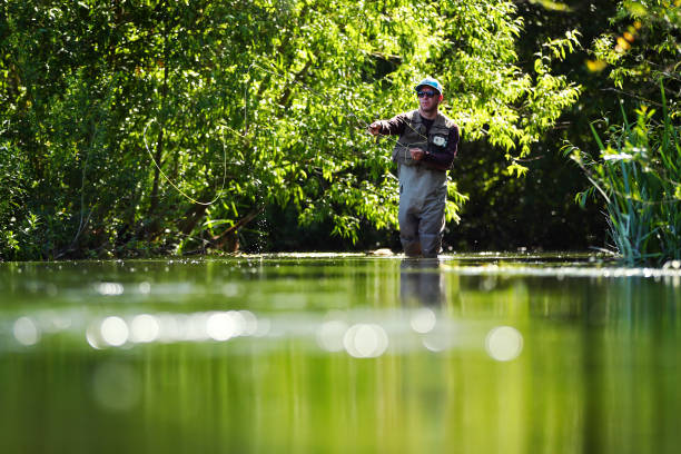 GBR: Fly Fishing On The River Coln