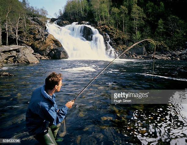 fly fisherman fishing in norwegian river - hugh sitton stock-fotos und bilder