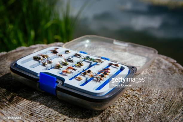 fly fisherman flies in tackle box - fly casting stock pictures, royalty-free photos & images