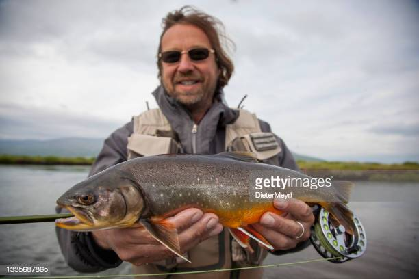 fly fisherman fly fishing on a splendid river - silver boot stock pictures, royalty-free photos & images