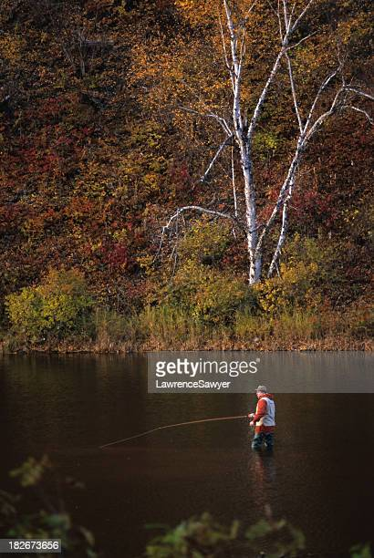 fly fisherman in a stream - fly casting stock pictures, royalty-free photos & images