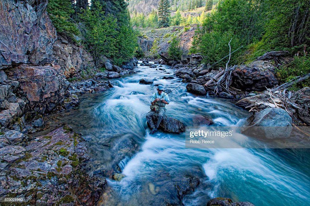 Fly fisherman in creek choosing his next fly, Colorado, USA : Stock Photo