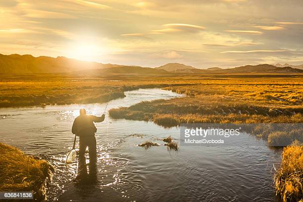 Fly Fisherman On The River Casting