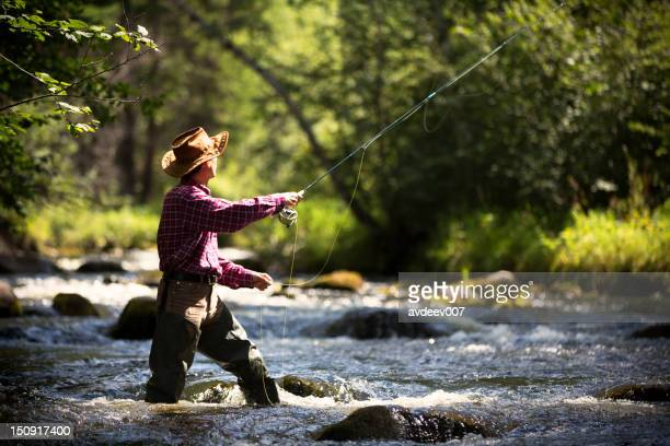 fly fisherman - fly fishing stock photos and pictures