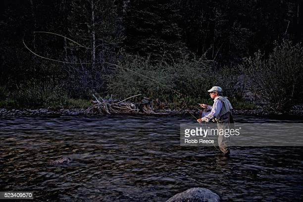 fly fisherman standing in stream and casting his fly rod, colorado, usa - robb reece stockfoto's en -beelden