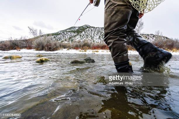 fly fisherman wading in river - wading stock pictures, royalty-free photos & images
