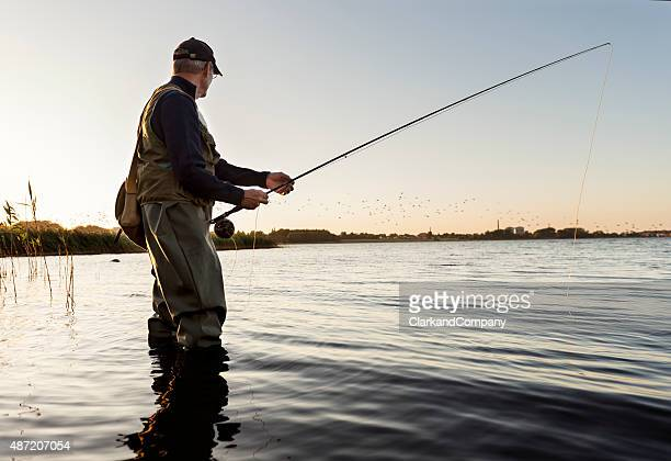 fly fisherman watching flock of birds fly past - fishing stock pictures, royalty-free photos & images