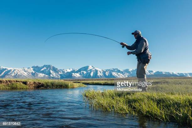 fly fishermen along the spring mountain stream - fly casting stock pictures, royalty-free photos & images