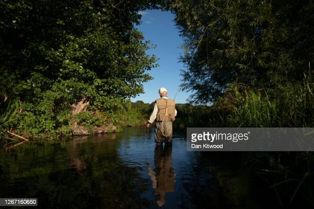 Fly Fishermen Jack Selwood takes on a section of the river Darent hoping to catch Brown Trout that they intend to return to the water on August 18,...