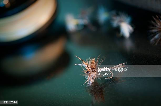 fly fishing bait - adams tennessee stock pictures, royalty-free photos & images