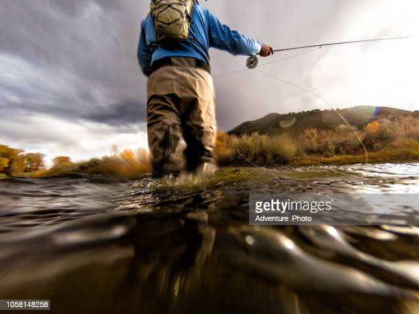 fly fishing casting - fly fishing stock photos and pictures